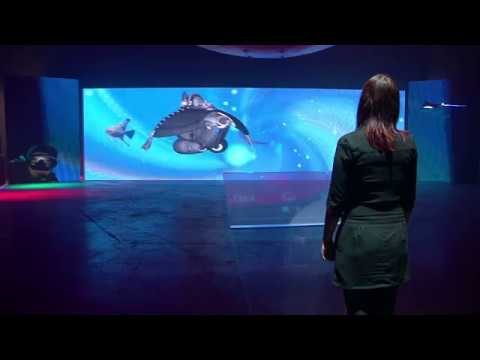 Interactive exhibitions and showrooms