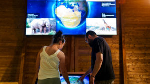 Interactive applications for museums