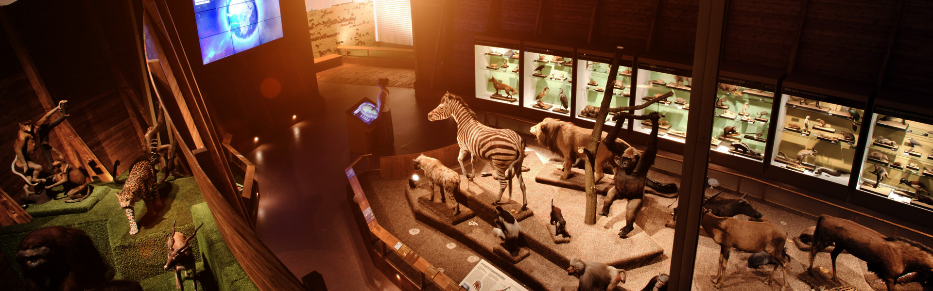 Museum and educational interactive applications